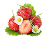 Strawberry fruits with flowers and leaves — Stock Photo