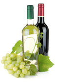 Two wine bottles and grapes — Стоковое фото