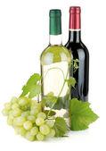 两个葡萄酒瓶和葡萄 — 图库照片
