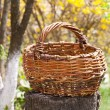 Old wicker basket in autumn garden — Stock Photo #7583220