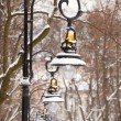 Lanterns in the winter park covered with snow - Stock Photo