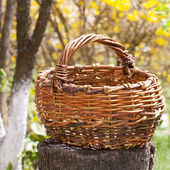Old wicker basket in an autumn garden — Stock Photo