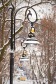 Lanterns in the winter park covered with snow — Stock Photo
