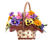 Koš různých květů na bílém pozadí — Stock fotografie