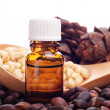 Pine nuts and bottle of essential oil — Stock Photo