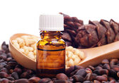 Pine nuts and bottle of essential oil — Stok fotoğraf