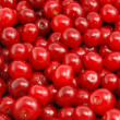Cherries — Stock Photo #7019383