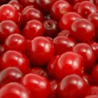 Cherries — Stock Photo #7074968