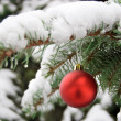 A red bauble on snowy pine — Stock Photo #7133668
