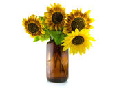 Bouquet of Sunflowers in vase — Stock Photo