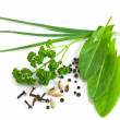 Greens and spices isolated on the white background — 图库照片