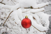 Christmas ball on the snow — Stock Photo