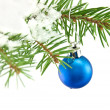 Ball christmas — Stock Photo #7945169