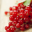 Ripe red currant berries - Stock Photo