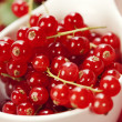 Ripe red currant berries — Stock Photo