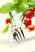 Fresh tomatoes, knife and fork on a plate — Stock Photo