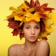 Beautiful woman with autumn leaves on yellow - Foto de Stock