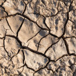 Cracked earth in dry desert. — Stock Photo #7729382