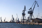Large cranes in the port of Thessaloniki — Stock Photo
