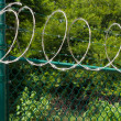 Razor wire — Stock Photo