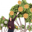 Stock Photo: Money growing on trees