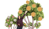 Money growing on trees — Stock Photo
