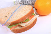 Sandwich in zipped plastic lunch bag — Stock Photo