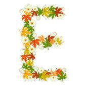 Motif floral lettre e — Vecteur