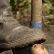 Worker boots shovel - Stock fotografie