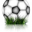Soccer ball and grass reflected — Stock Vector