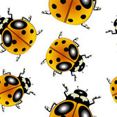 Ladybugs pattern — Stock Vector