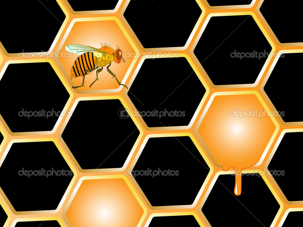 Bee and honey, abstract vector art illustration  Stockvectorbeeld #6801010