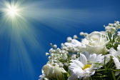 Boquet of white flowers on the sun sky background — Stock Photo