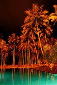 スイミング プールと高級ホテルでヤシの木の夜照明 b — ストック写真