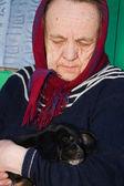 La vieja señora con un perrito en sus brazos. — Foto de Stock