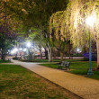 Royalty-Free Stock Photo: Beautiful park zone in summer at night