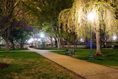 Beautiful park zone in summer at night — Stock Photo