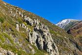 Rocks on a slope — Stockfoto