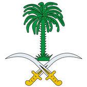 Vector national flag of Saudi Arabia — Stock Vector