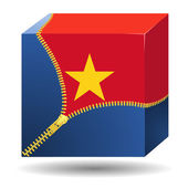 Cube with the flag of Vietnam in a case — Vector de stock