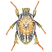 Vector artwork a beetle — Stock Vector