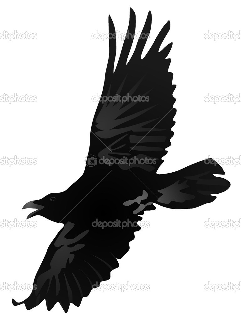 Vector drawing a flying crow — Stock Vector #7253826
