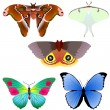 Vector Collection of butterflies — Stock Vector