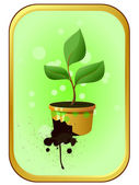 Sprout in a pot — Stock Vector