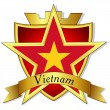 Vector gold star to the flag of  Vietnam on the background of th — Stock Vector