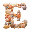 Summer alphabet made of seashells — Stok fotoğraf