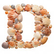 Summer alphabet made of seashells — 图库照片