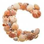 Summer alphabet made of seashells — Stock Photo
