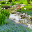 Garden with pond in asian style — Stock Photo #7676337