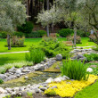 Garden with pond in asian style — Stock Photo